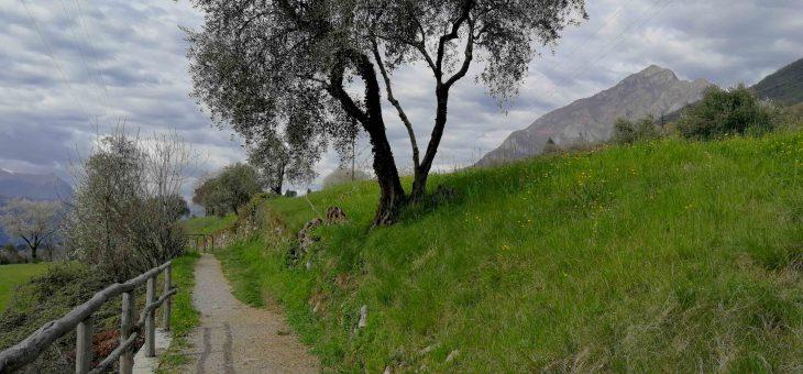Il sentiero del viandante – Prima tappa